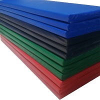 Preschool 8g Pvc Mattress - Medium density Foam (6cm Thick)
